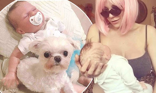 Grieving Courtney Stodden cradles 'reborn baby' after miscarriage