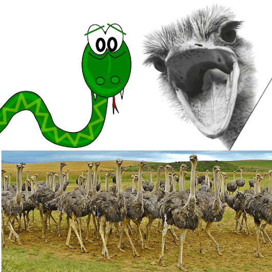 Get Safe Paths From Arbitrary Strings In Python | The Ostrich