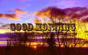 312 Good Morning 3d Wallpaper Images Photo Pictures Download