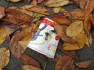 Discarded McDonalds packaging