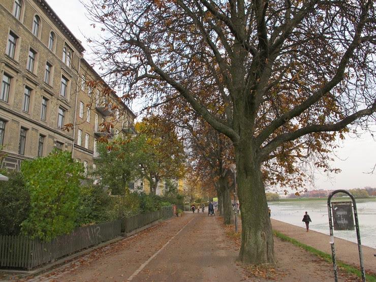 The chestnut tree massacre