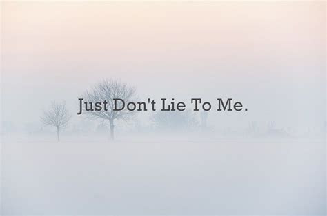Just Dont Lie To Me Quotes