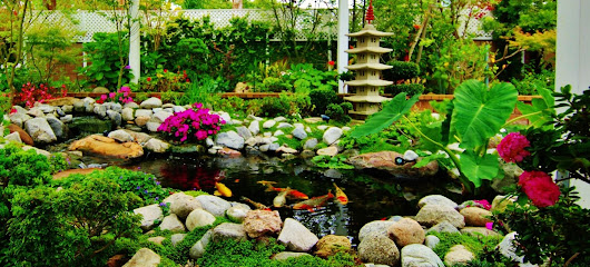 Manhattan Beach Landscaping Contractor Los Angeles | Enviroscape LA