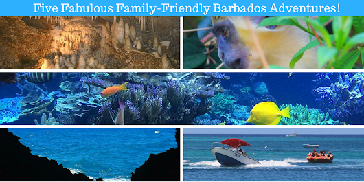 5 Family-Friendly Barbados Adventures
