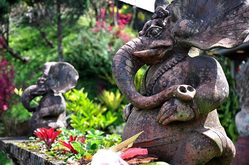 Ulun Danu Bratan Temple Elephants