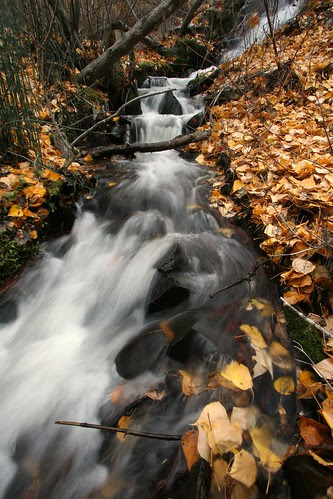 fall-creek