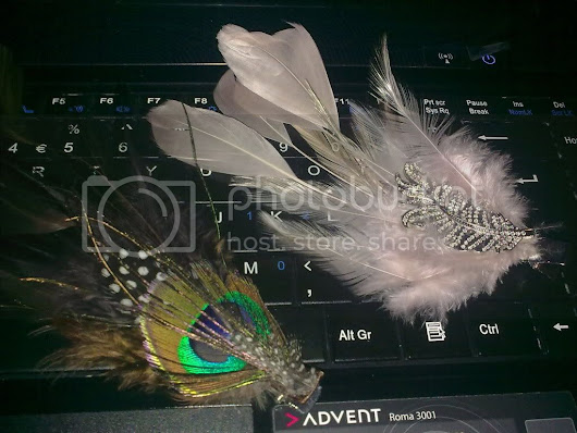 CUTE 'Feather' Clips-ins!