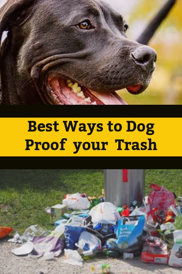 Outside Trash Can Storage Ideas Animal Proof Garbage Cans Home Ideas