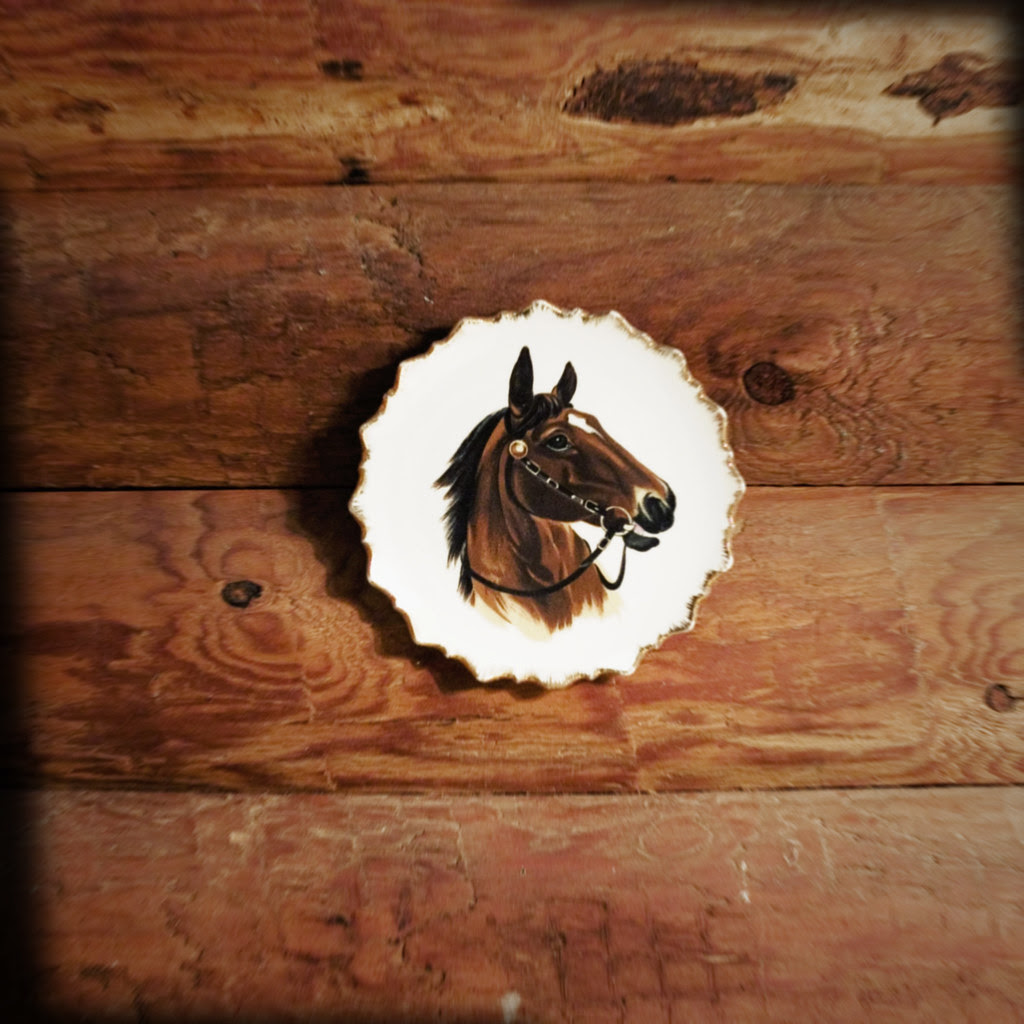 HORSE BATHROOM DECOR | HORSE BATHROOM DECOR
