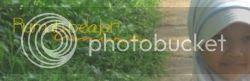 photo ae9a6a15-2c23-400f-9bd1-2b51dfa8c616_zps0d339b25.jpg
