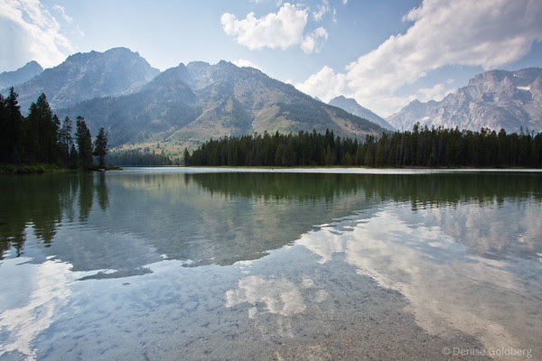 grand teton national park, reflecting mountains and trees