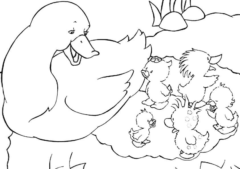 Dibujos De Otoño Para Imprimir Y Colorear Dibujos Para Colorear