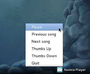 nuvola player