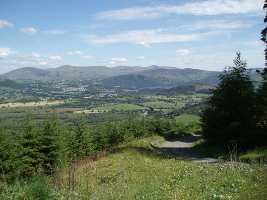 Whinlatter Trail Centre, Lake District - Bubbleless, Bikes, Food and Drink in the Cotswolds