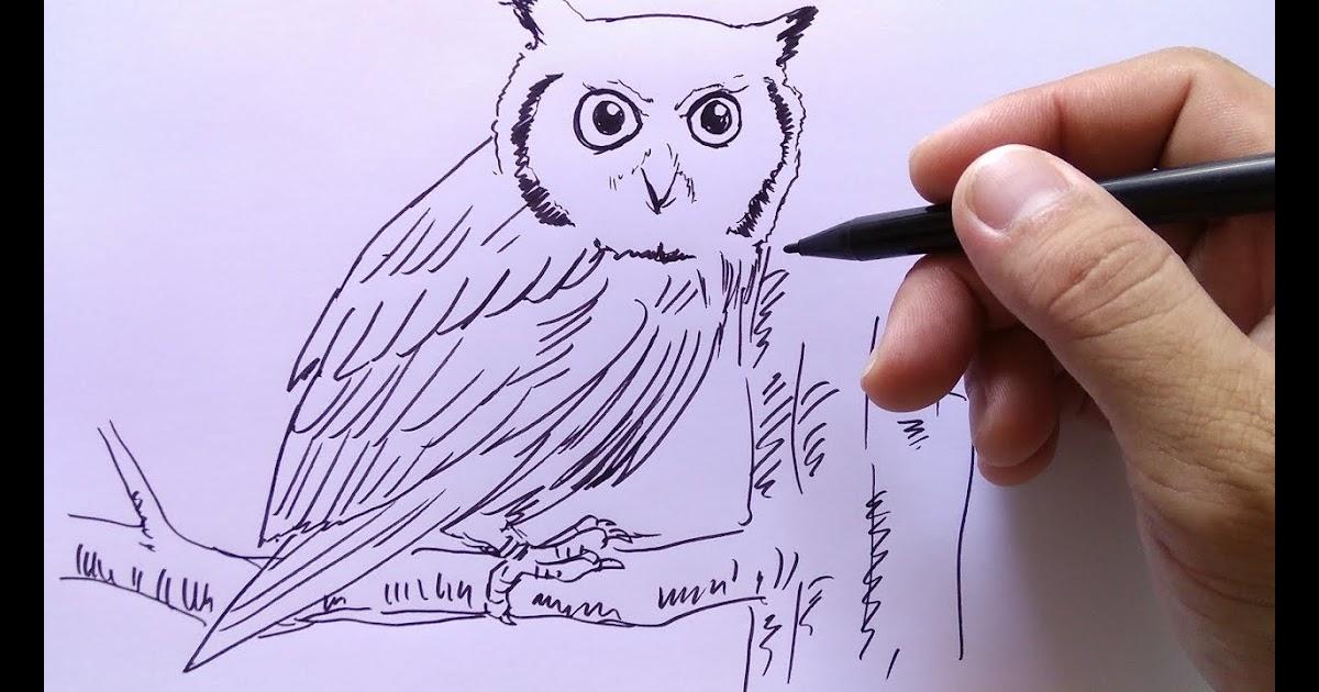 Unduh 78+ Gambar Grafiti Burung Hantu Paling Bagus Gratis