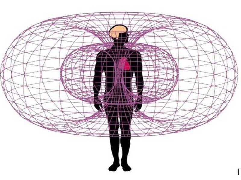 ηλεκτρομαγνητικο πεδιο καρδιας
