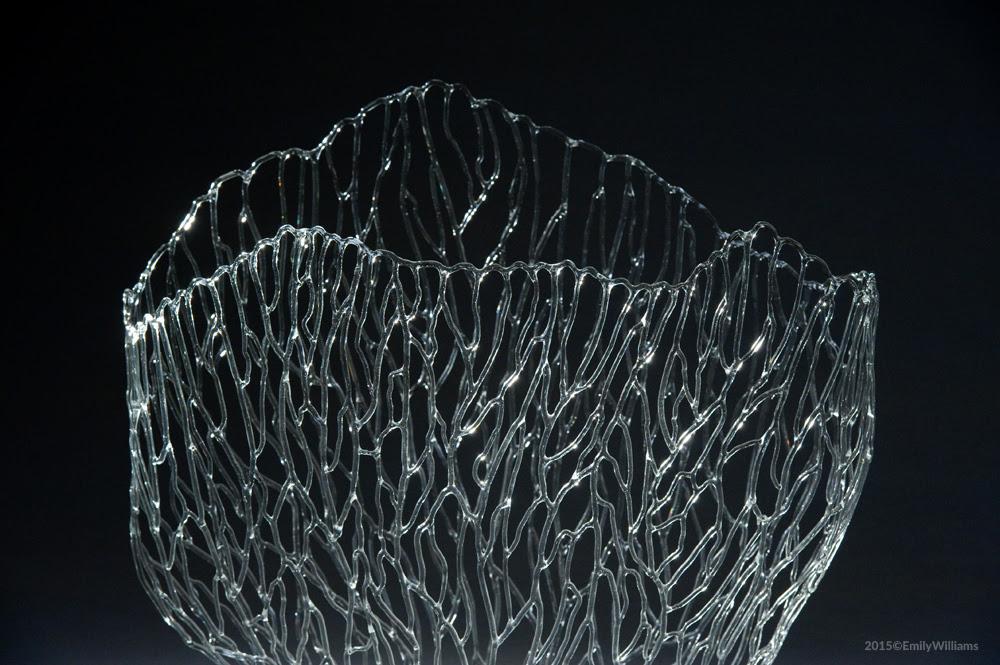 Coral Skeleton_Detail