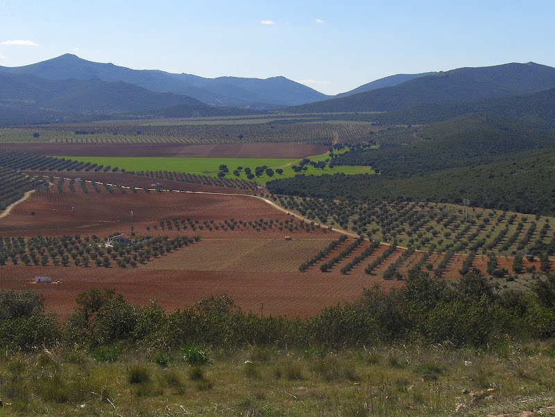 vistas Calderina II