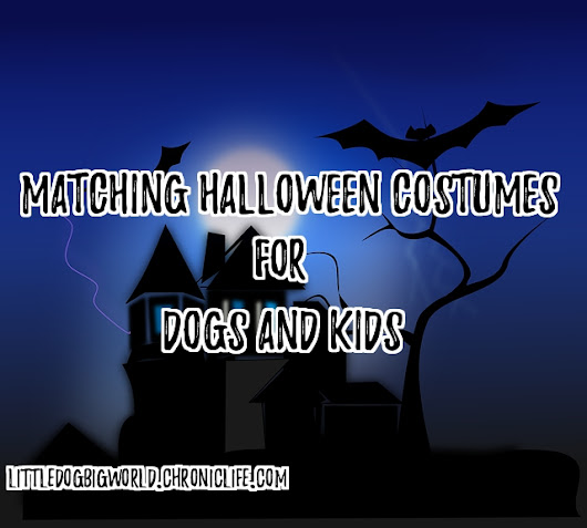Matching Halloween Costumes for Dogs and Kids