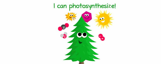 There's More to Photosynthesis than just Plants, Sun and Carbon Dioxide |