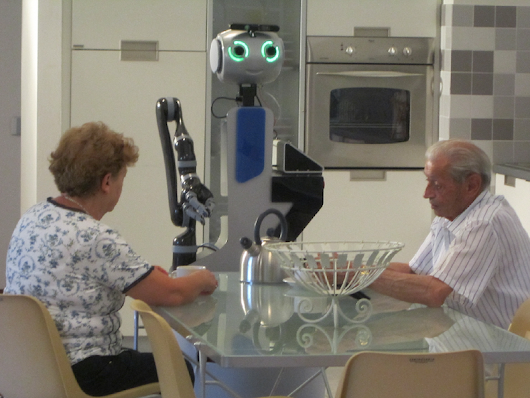 Robotic Services Acceptance in Smart Environments With Older Adults: User Satisfaction and Acceptability Study