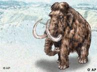 Mamut lanudo (dibujo): falta de alimentos.