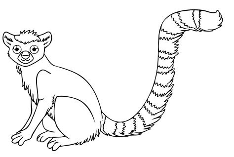 rainforest coloring pages endangered species coloring