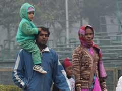 Delhi Sees Hottest January 30 In Last 5 Years