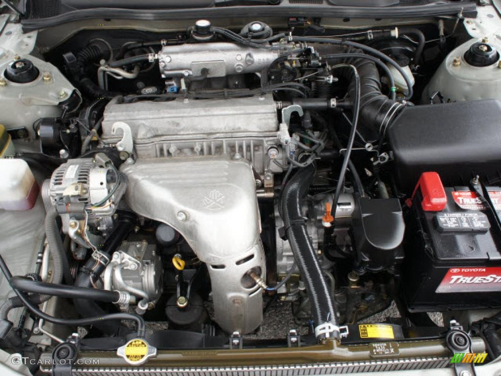 i2000 toyota camery 2 2l engine diagram   wiring diagram 179 grouper  avemarisstella.it
