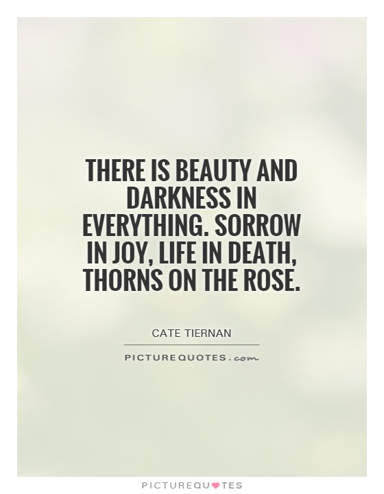There Is Beauty And Darkness In Everything Sorrow In Joy Life