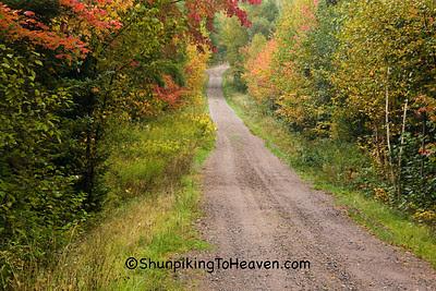Autumn Road Scene, Lincoln County, Wisconsin