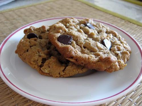 cookieschunkypeanutbutteroatmealchocolatechipster