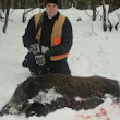Hunting Boars with Dogs | Tioga Boar Hunting