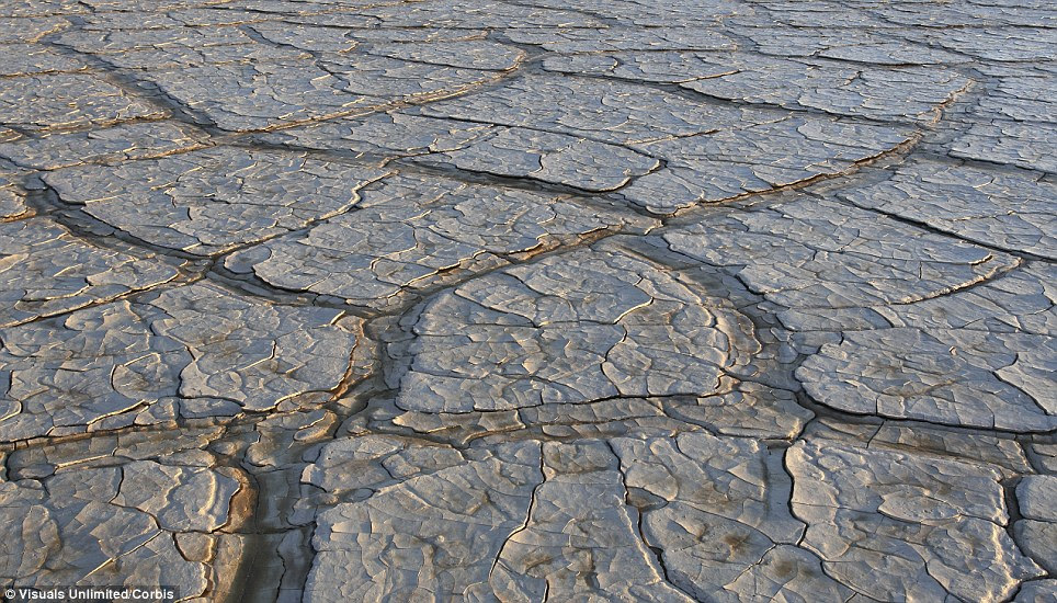 Cracked mud playa surface in the Alvord Desert, Oregon in the U.S.