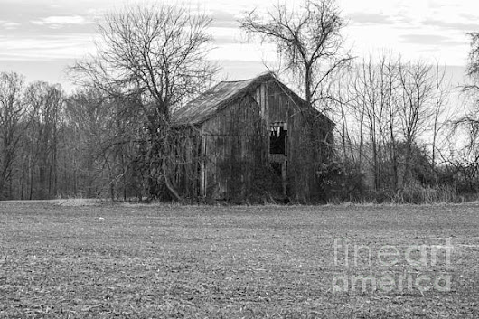 Old Barn Photograph by Charles Kraus - Old Barn Fine Art Prints and Posters for Sale