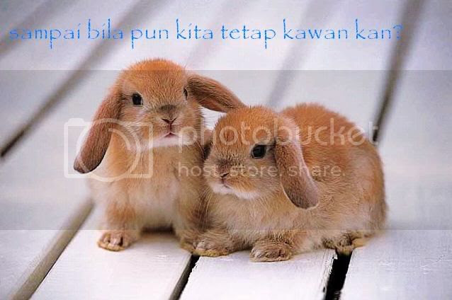 teman Pictures, Images and Photos