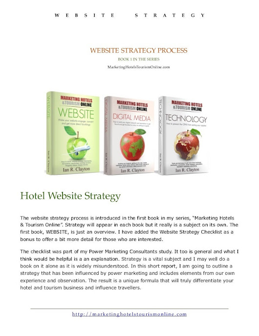 Website Strategy Process Report