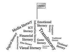 Literacy mountain
