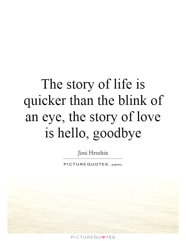 The Story Of Life Is Quicker Than The Blink Of An Eye The Story