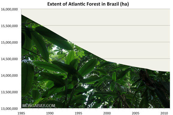 extent of atlantic forest cover in brazil