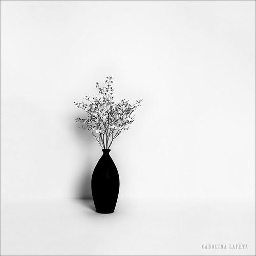 Loneliness por Carolina Lafetá