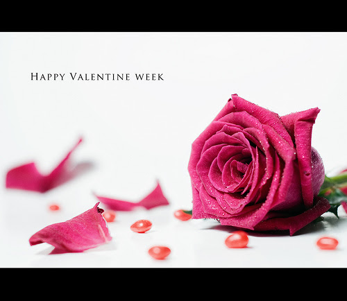 5/52 Happy Valentine Week :)