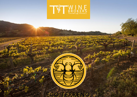 Introducing Eco Terreno Wines by Mark Lyon
