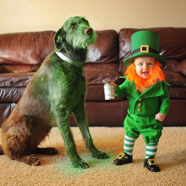 Dad Photographs Baby Son As Cute Tiny Leprechaun Leading Up To St