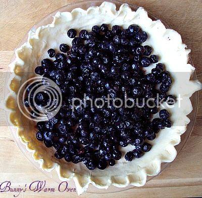 Blueberry Cream Pie photo DSC07054_zps411dba34.jpg