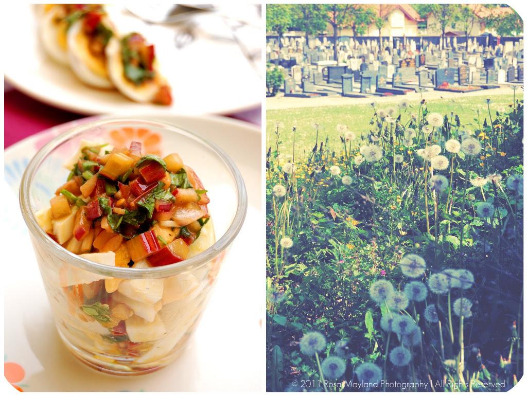 Egg Salad Picnik collage 6 bis
