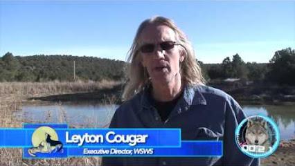 leyton cougar