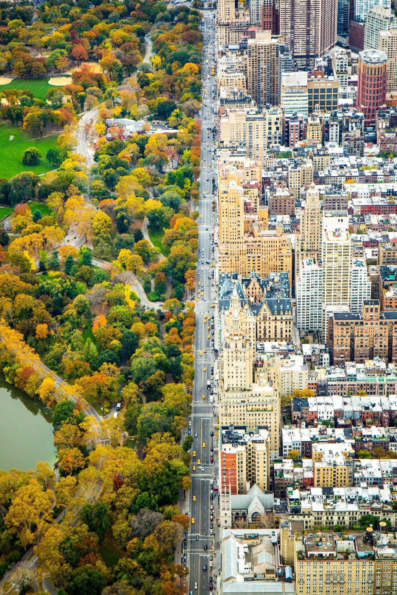 Central Park, N.Y.