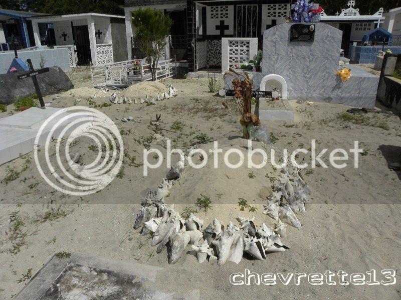 http://i1252.photobucket.com/albums/hh578/chevrette13/DSCN7656Copier_zps53333a85.jpg