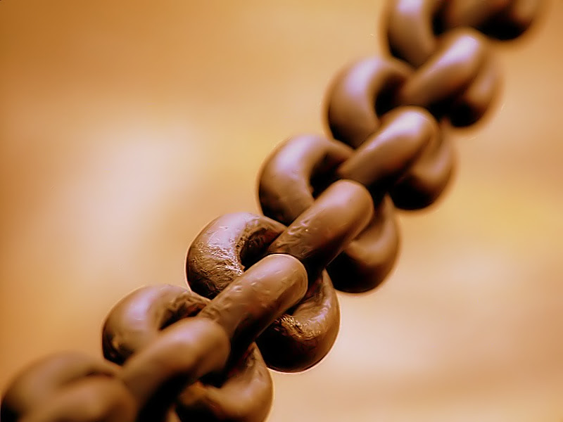 Broad chain closeup